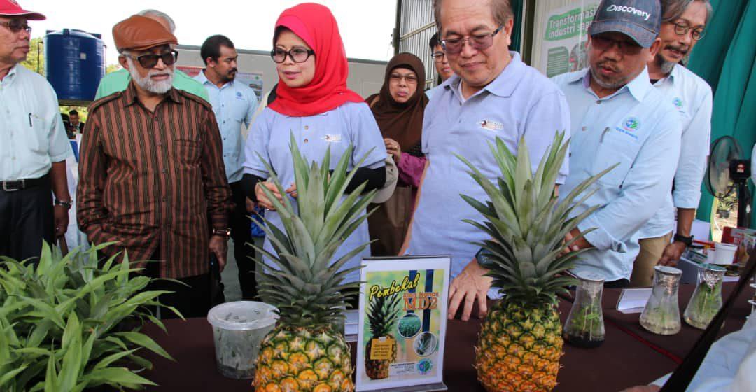 Penumbuh Kaunsil Mulung Sarawak benung diperunding