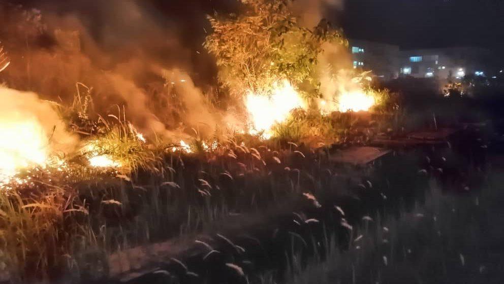 Api 'makan' belukar