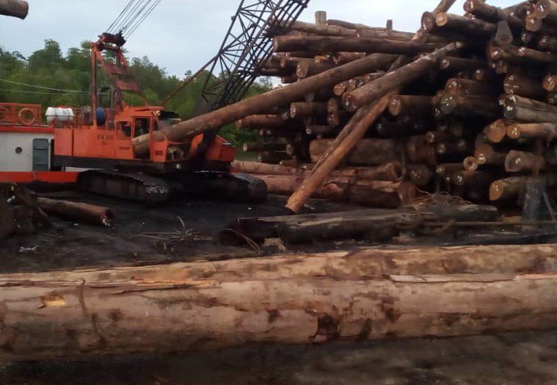Maut ditimpa kayu balak