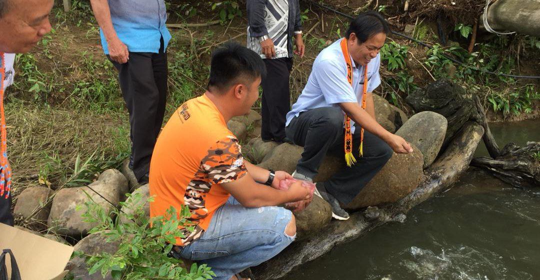Betanam Betupi: Ikan semah manah dikemansang di Kpg Long Tengoa