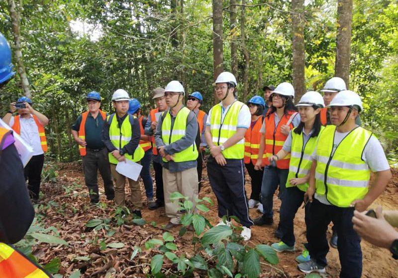Tingkat pengurusan hutan lestari