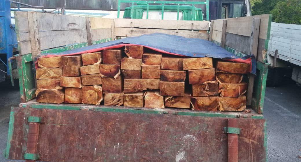 Lori yang membawa kayu batak bernilai RM10,000 berjaya ditahan