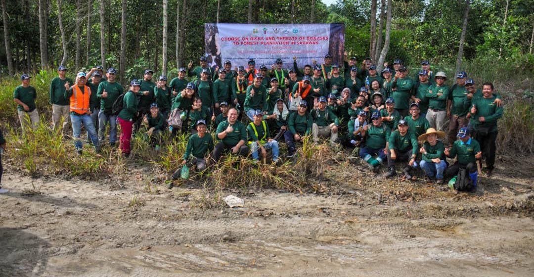 Kursus risiko memberhaya terhadap ladang hutan di Sarawak