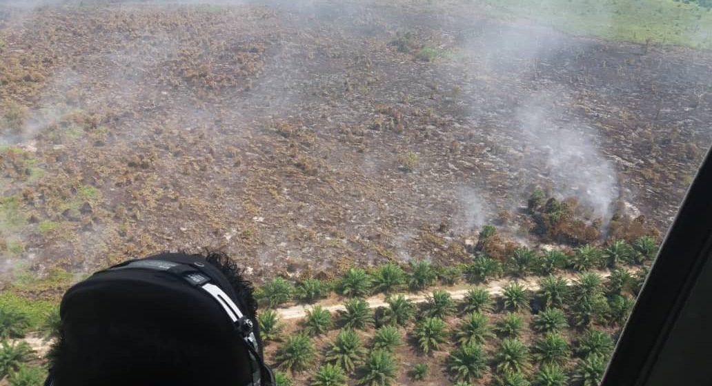 Kebakaran hutan, tanah gambut terkawal di Miri