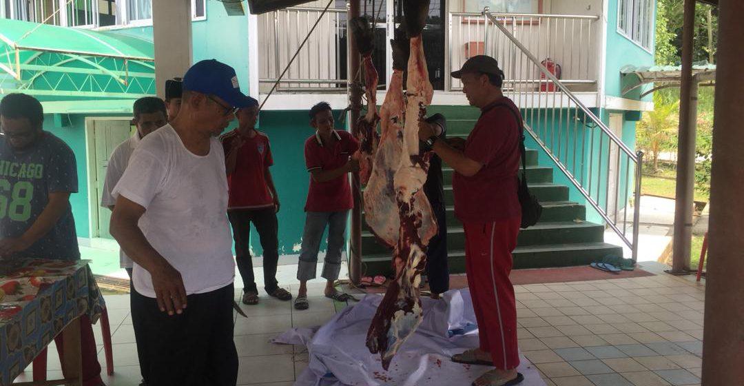 Korban kerbau dilakukan Ahli Parlimen Limbang hari ini