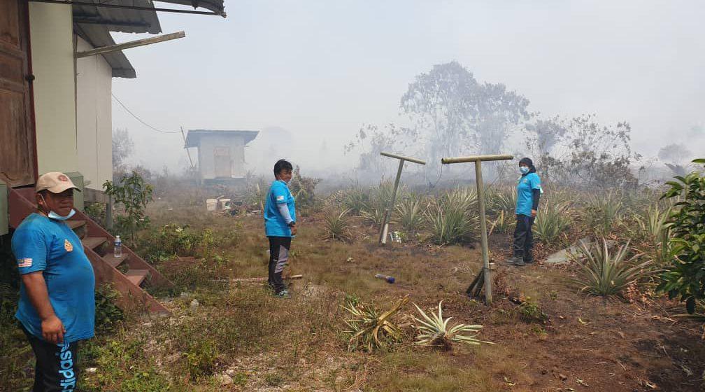 394 kes terkini hutan belukar terbakar