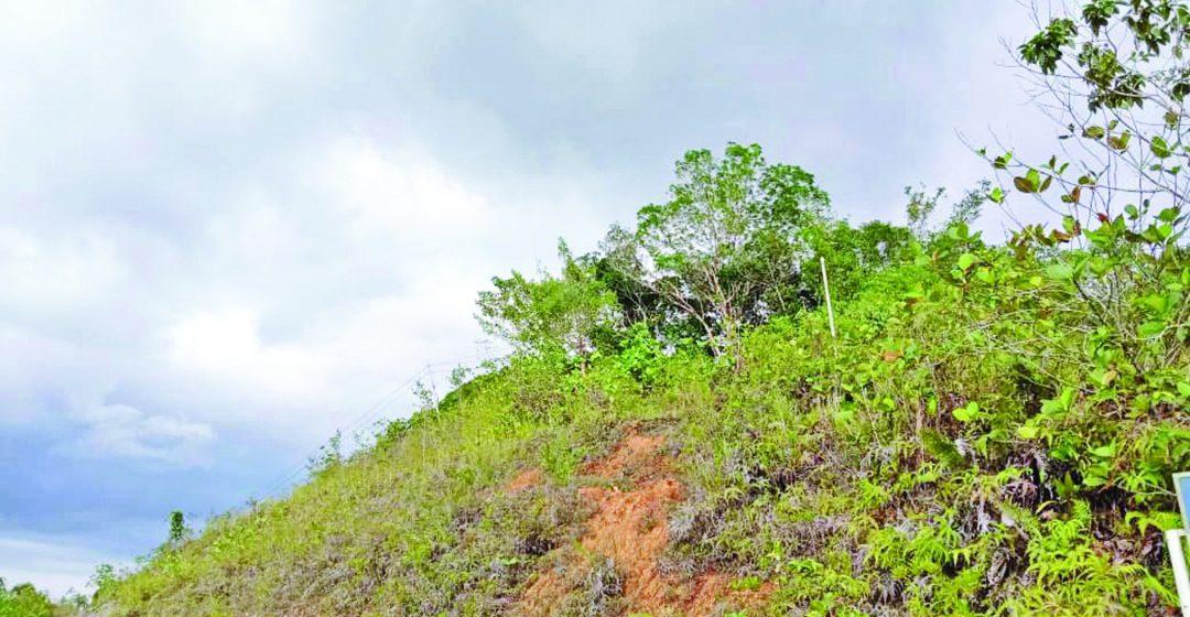 Sejarah Bukit Baya di Saratok