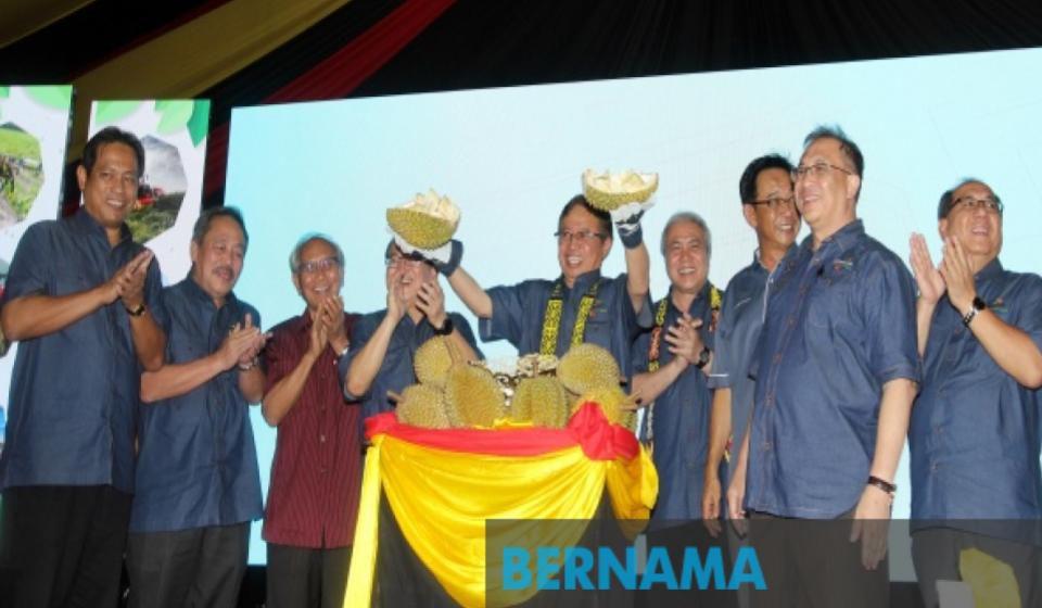 Sarawak mahu jadikan kredit karbon sumber pendapatan baharu