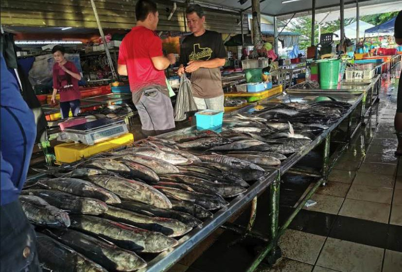 Bekalan ikan segar cukup di Mukah