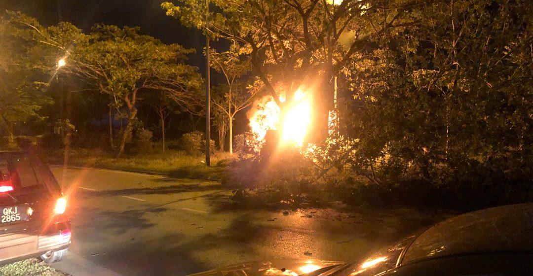 Naris terkorban kereta rempuh pokok