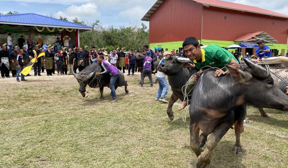 Pesta Bedudun promosi budaya Limbang