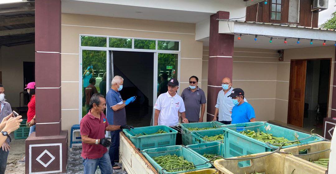 PKP: 700kg sayur diagihkan percuma untuk 434 KIR di Bintulu