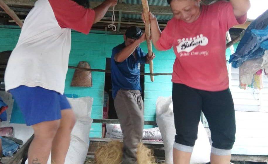 Peranak Rh Gangga, Beruan Besai beripai nungku padi nyerumba PKP