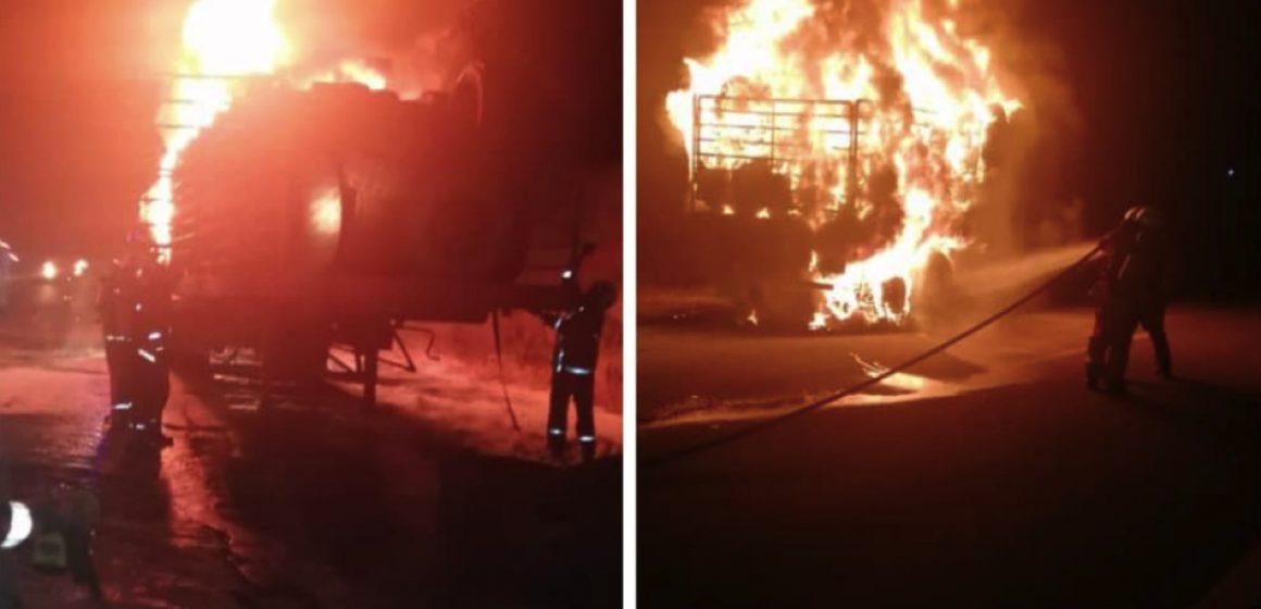 Anggota bomba bertungkus lumus padam api lori treler
