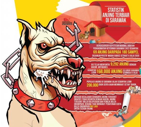 Rabies: Vaksin dan mandulkan anjing