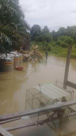 Air naik di rumah panjang di Logan Tasong