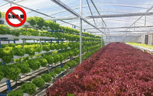 Pertanian alternatif untuk pencari kerja