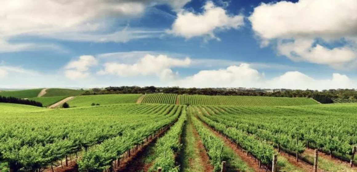 Bajet pertanian Sarawak 2021 dalam AFF