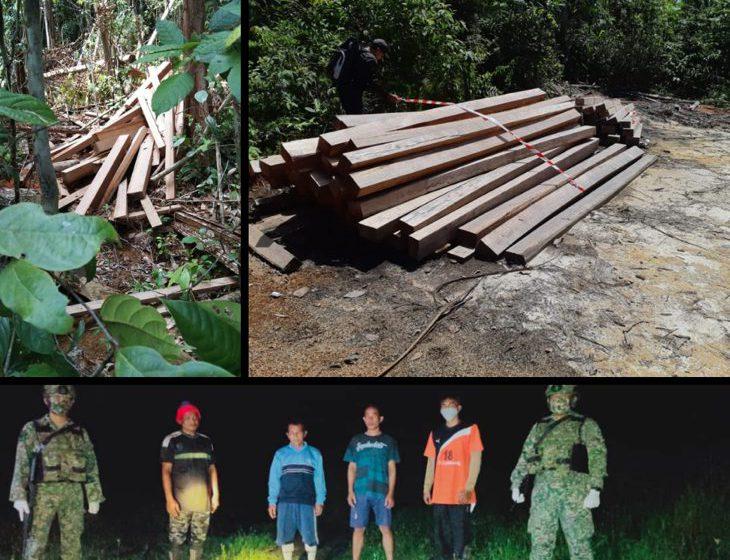 183 batang kayu gergaji ditinggalkan di sempadan