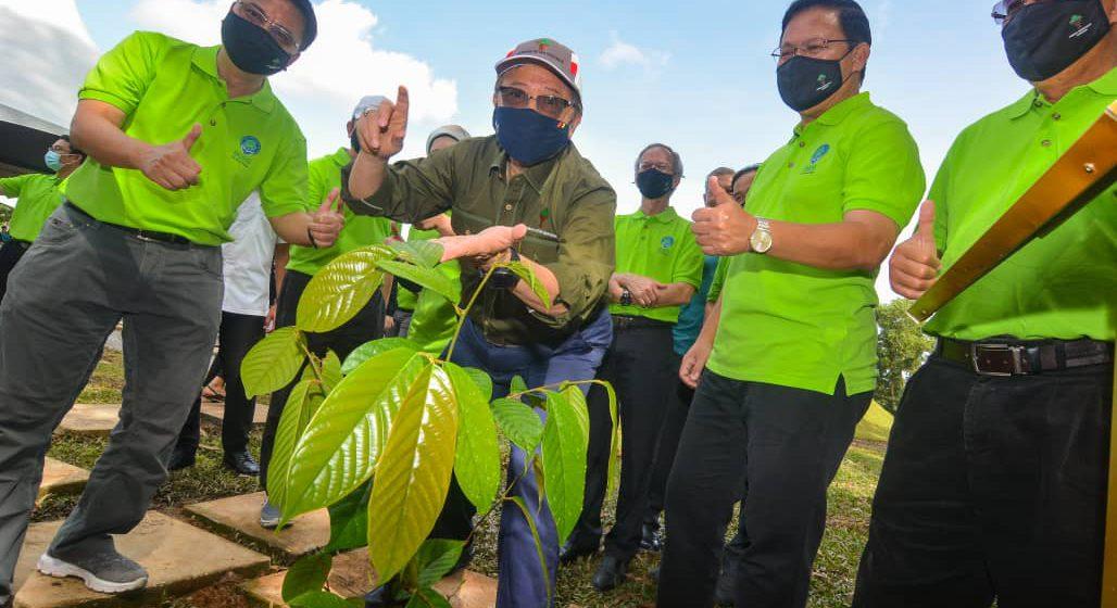 Sarawak berjaya menanam lebih 10 juta pokok dalam tempoh 18 bulan