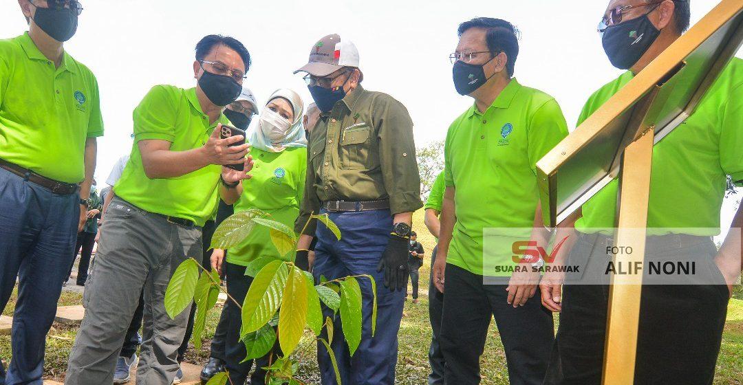Sarawak mujur nanam 10.4 juta kayu dalam 18 bulan