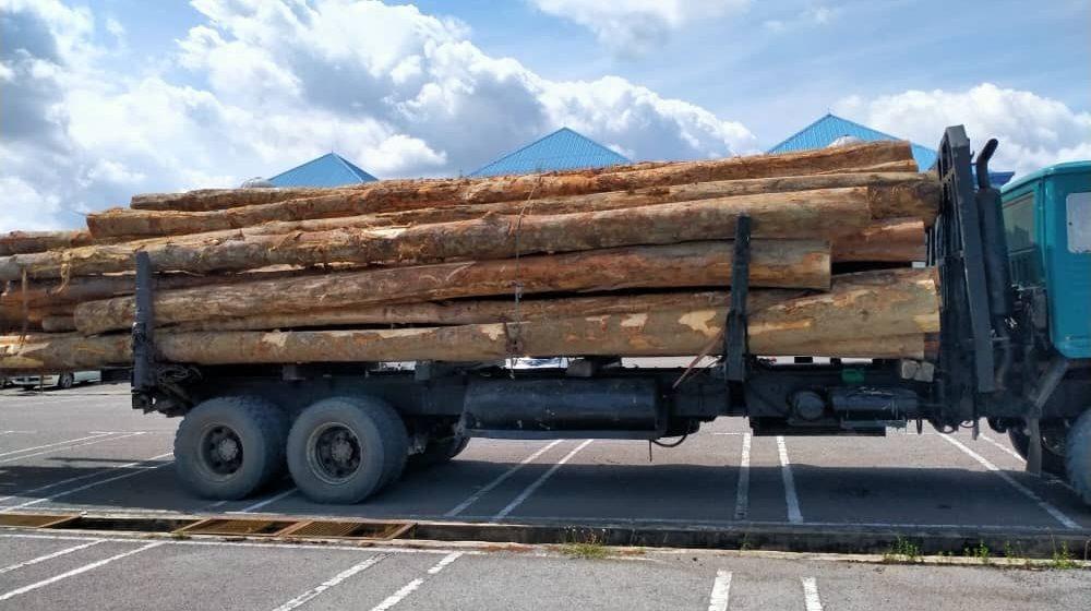 Jabatan Hutan Sarawak rampas 53 batang kayu balak di Jalan Pasai Siong, Sibu