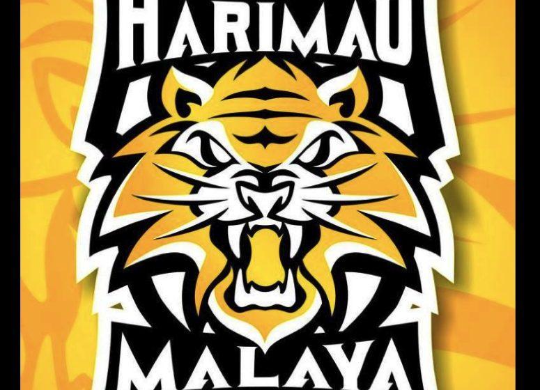Kelayakan Piala Dunia/Asia: De Paula, Luqman bintang baharu Harimau Malaya