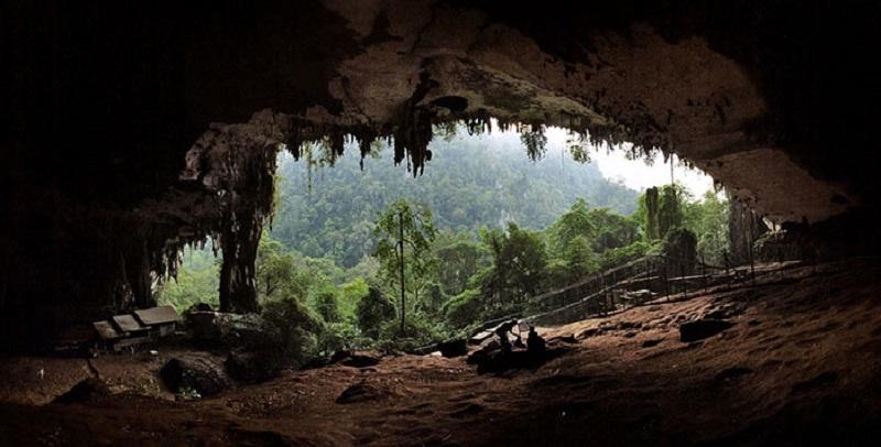 Jadikan Taman Negara Niah sebagai Tapak Warisan Unesco