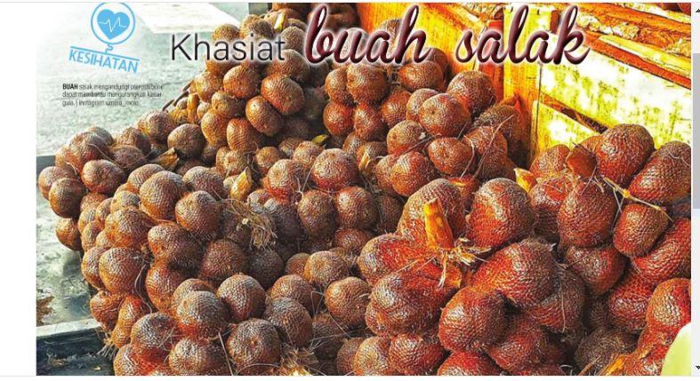 Khasiat buah salak