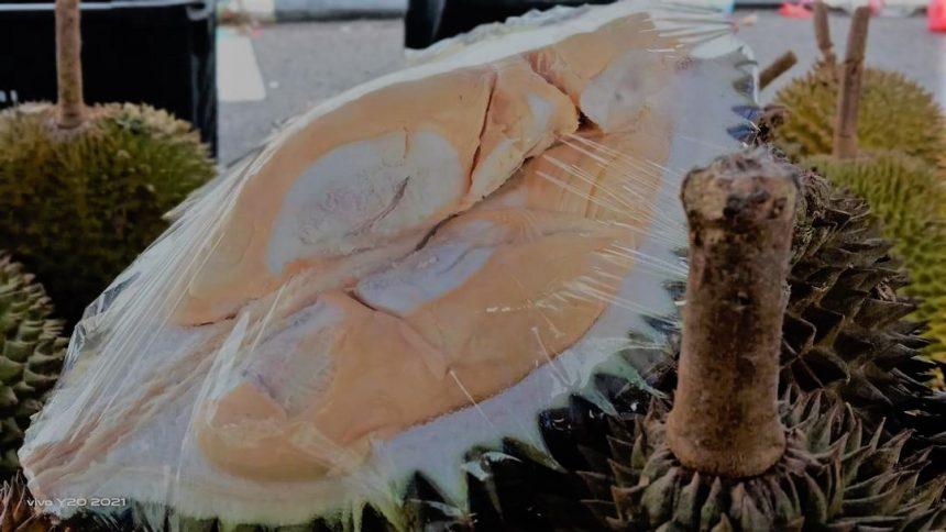 600 durian laris sehari