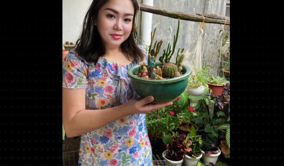 Taman kaktus mini Candida